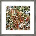 Butterflies In The Grove  Framed Print
