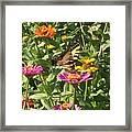 Butterfly Breakfast Framed Print