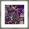 Butterfly Monarch Flower  Framed Print