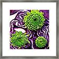 Cabbage Patch 2 Framed Print