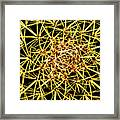 Cactus From Top Framed Print