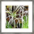 Cahaba Lily In Huntington Botanical Gardens In San Marino-california Framed Print