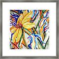 California Wildflowers Series I Framed Print