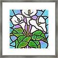 Calla Lilies 3 Framed Print