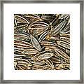 Caraway Seeds Framed Print