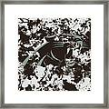 Carolina Panthers 1a Framed Print
