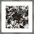 Carolina Panthers 1b Framed Print