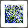Carpet Of Blue Framed Print