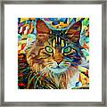 Cat On Colors Framed Print