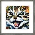 Cats Eyes 15 Framed Print