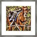 Cavalry Horse Circa 1864 Framed Print