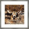 Celtic Stag Framed Print