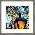 Central Park 6546 Framed Print