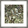 Chairs In Backyard Framed Print