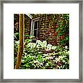 Charleston Alley Window Framed Print