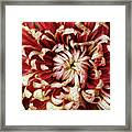 Chase Perfection Framed Print