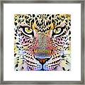 Cheetah Vi Framed Print