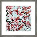 Cherry Blossoms V 201631 Framed Print