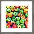 Chili Pepper Fest Framed Print