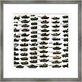 Chinese Pla Tanks Framed Print