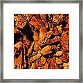 Chips From A Dead Tree Framed Print