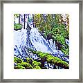 Clearwater Falls, Highway 138, Umpqua National Forest, Oregon Framed Print