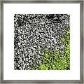 Coast - Abstract Framed Print