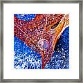 Cold Encasement Framed Print