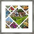 Collage Of Madeira  Framed Print