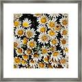Collective Flowers Framed Print