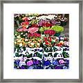 Cologne Flowers Framed Print