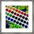 Color Palette Framed Print
