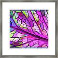 Colorful Coleus Abstract 3 Framed Print