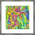 Colorful Daisies Framed Print