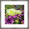 Colorful Garden II Framed Print