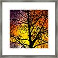 Colorful Silhouette Framed Print