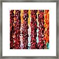 Colors Of New Mexico Framed Print