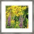 Columbia Gorge Wildflowers Framed Print