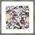 Cosmic Blooms Framed Print
