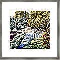 Creek In The Forest Framed Framed Print
