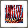 Crimson Birch Trees Framed Print