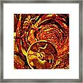 Crystal Ball Project 14 Framed Print