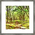 Dappled Framed Print