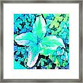 Dappled Light Framed Print