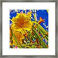 Day Lilies In The Sky With Diamonds  Framed Print