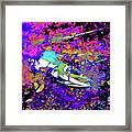Dead Salmon 8 Framed Print