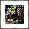 Deep Sea Monster Fish Framed Print