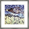 Desert Crow Framed Print
