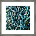 Detail View Of The Kinsol Trestle Framed Print