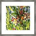 Divine Blooms-21061 Framed Print